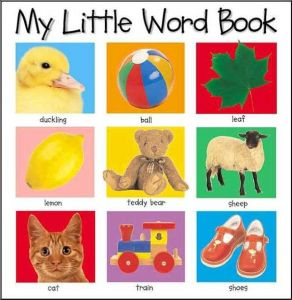 My Little Word Book by Roger Priddy - Hardcover