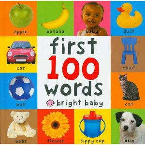 First 100 Words by Roger Priddy - Hardcover