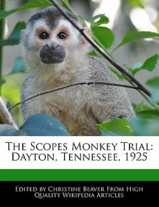 scopes monkey trial The scopes trial, otherwise formally known as the state of tennessee v john thomas scopes, was an american legal case that took place in the court of dayton, tennessee in july 1925.