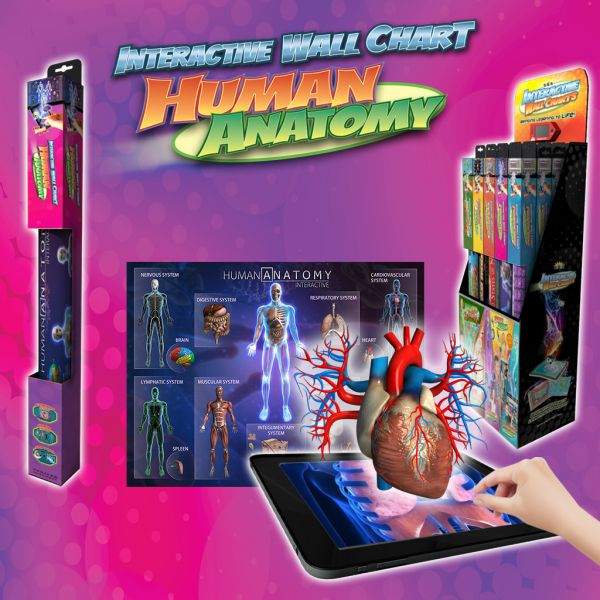 Kids Interactive Human Anatomy Ispa Price Review And Buy In