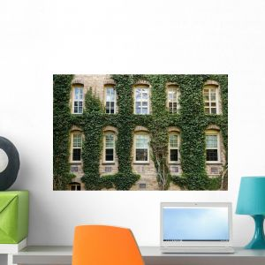 Ivy Around Windows Princeton Wall Mural By Wallmonkeys L And Stick Graphic Wm192189 24 W X 16 H Medium Fot 6237413