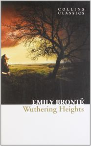 the descriptive story of heathcliffs wuthering heights