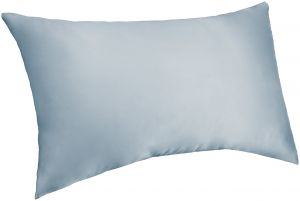 2253d5d338cf Pinzon Mulberry Silk Pillowcase - Standard