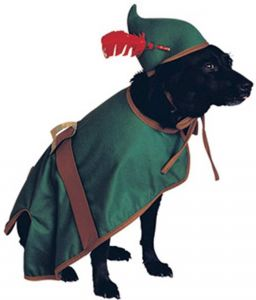 1ec49f65 Rubies Costume Halloween Classics Collection Pet Costume Medium Green  887877M