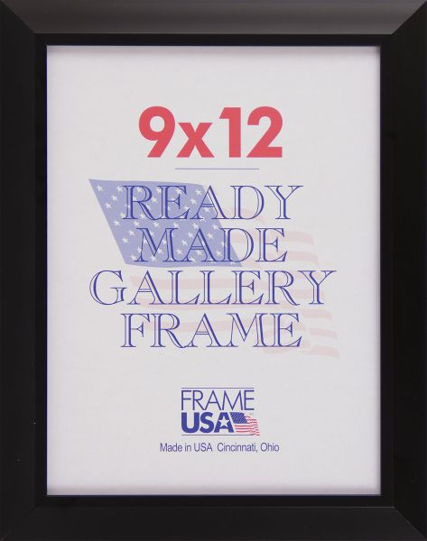 9 x 12 Budget Poster Frame / Picture Frame w/Plexi-glass in Black or ...