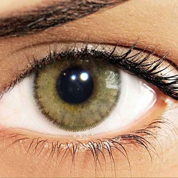 147ee106ced Solotica Natural Colors Cosmetic Contact Lenses Yearly Disposable - Ocre  (Hazel)