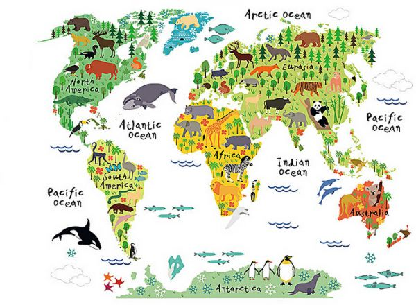 Souq cartoon animals world map wall decals for kids rooms office cartoon animals world map wall decals for kids rooms office home decorations pvc wall stickers diy mural art posters gumiabroncs Images
