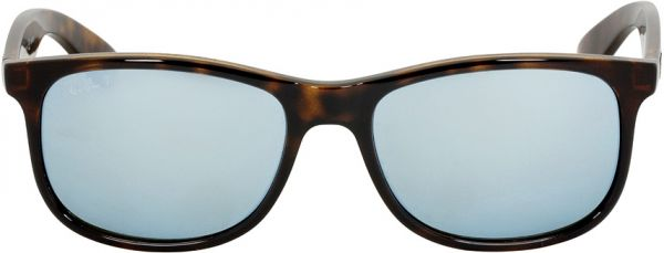 1f5abf0c02 Ray-Ban Andy Nylon Frame Silver Lens Sunglasses RB4202