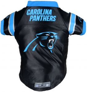 cheap for discount 7bd2f 80623 Buy carolina nfl newton youth jersey | Littlearth,Champion ...