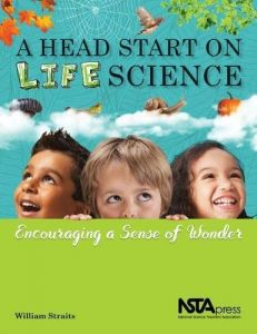reaching st andards and beyond in kindergarten jacobs gera crowley kathleen e