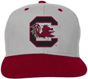 NCAA South Carolina Fighting Gamecocks Kids   Youth Boys Grey Two Tone  Flatbrim Snapback Hat d191f65384a4