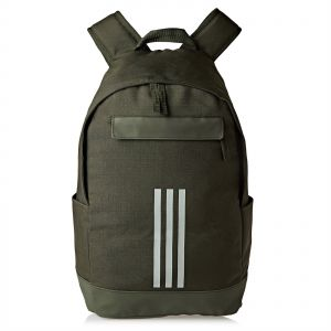 2565682fe61a1 adidas Unisex Classic Fashion Backpack - Green